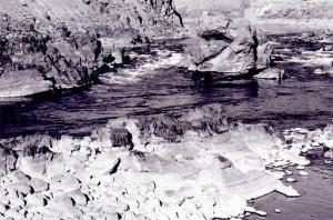 LA-2  Fraser River
